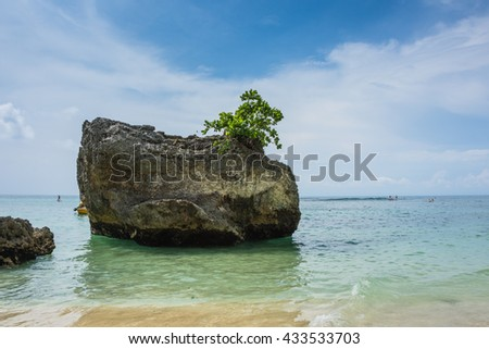 Tropical beach with rocks