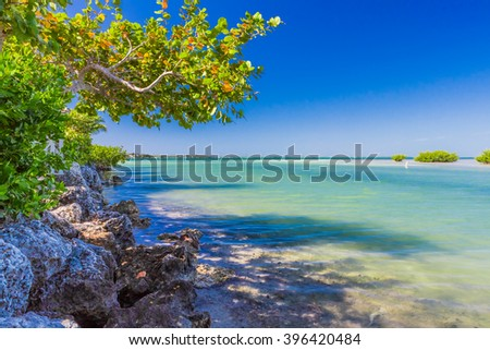 Tropical blue harbor in Florida Keys  - stock photo