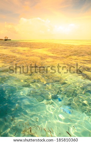 Tropical blue sea water in Maldives - stock photo