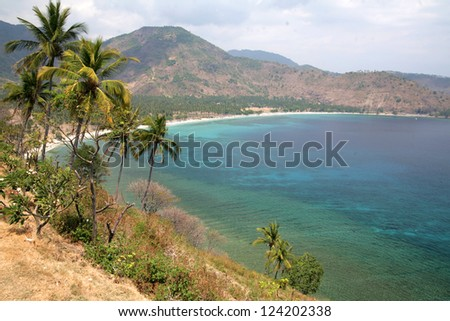 Tropical calm lagoon with palm trees among a coast at sunny day. Lombok island