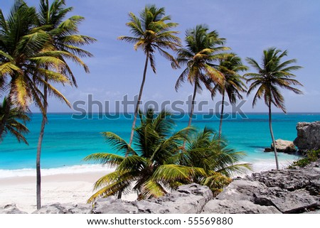 Tropical caribbean beach / Bottom Bay / Barbados - stock photo
