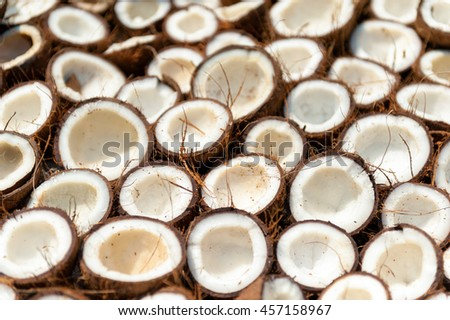 Tropical coconut background