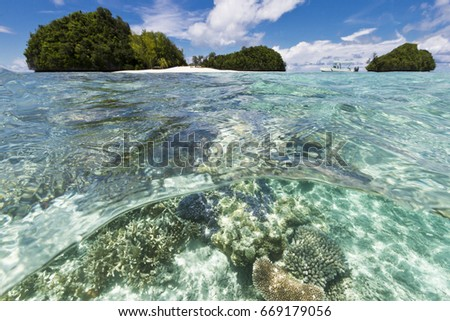 Tropical coral reef and island split shot