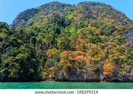 Tropical dense jungle coastline winter colors on a limestone hill, Pang Nga bay, Thailand - stock photo