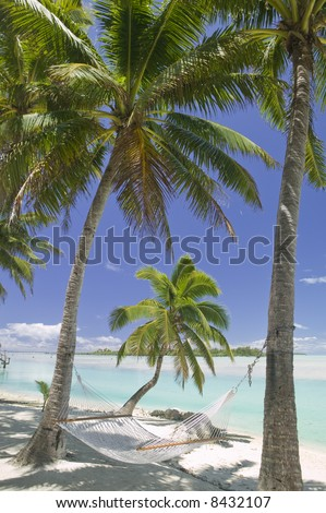Tropical Dream Beach Paradise of the South Pacific Hammock under Palm Trees - stock photo