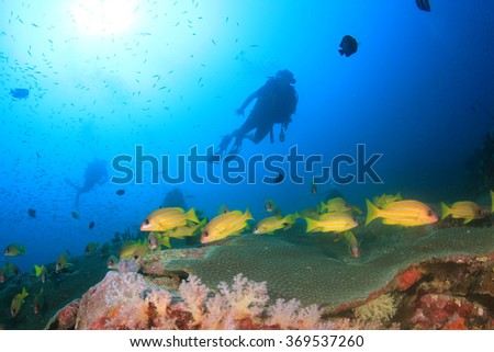Tropical fish, coral reef and scuba divers underwater in sea ocean - stock photo