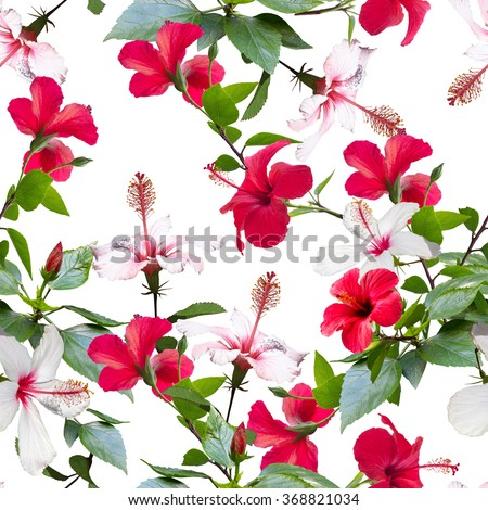 Tropical floral pattern isolated on a white background. Realistic photo collage of tropical paradise and flowers hibiscus.  - stock photo