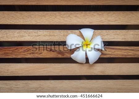 Tropical flowers Plumeria on wood - Single Plumeria or aroma Plumeria concept - stock photo