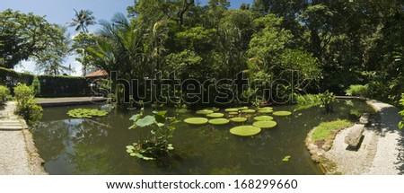 Tropical Garden, Malaysia - stock photo