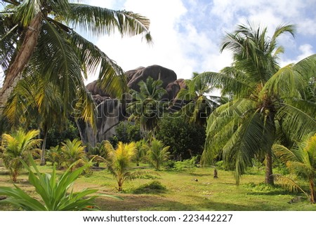 Tropical garden with palm trees and granite moutains , at Seychelles .