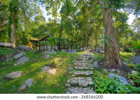 Tropical green garden with a pathway in Thailand - stock photo