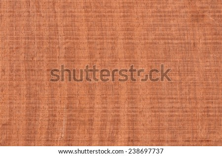 Tropical hardwood and textured background / Abstract background / Mankind most valuable and sustainable resources