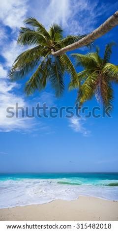 Tropical Heaven - stock photo