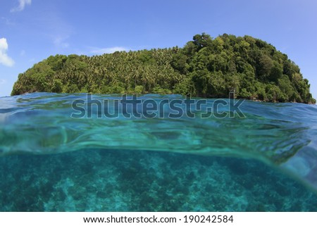 Tropical Island and Blue Sea