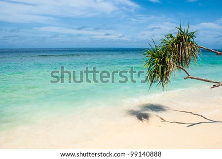 Tropical island beach, Ari Atoll, Maldives - stock photo
