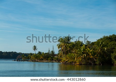 Tropical island panorama with leaning coconut tree, and houses hidden by lush vegetation, Bocas del Toro
