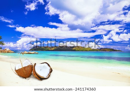 tropical island. scene with coconut