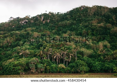 Tropical island view during stormy weather. Raining. Jungle hill planted with palm trees.