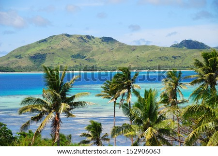 Tropical island with Fijian Palm trees