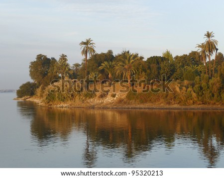 Tropical island with palm trees int he River Nile at Egypt - stock photo