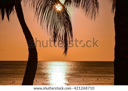 tropical island with the Dominican Republic Caribbean white beaches and palm trees famous for colorful sunsets - stock photo
