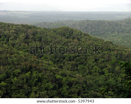 tropical jungle view - stock photo