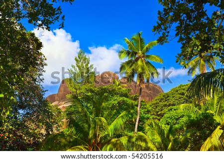 Tropical landscape at Seychelles - vacation background