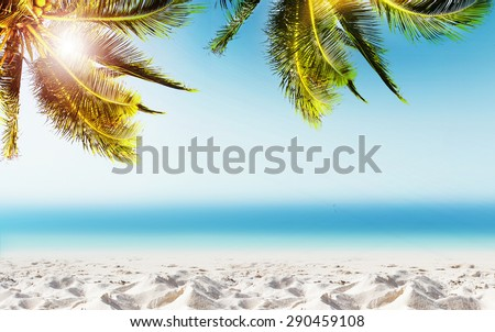 Tropical landscape with coconut palm tree, white sand beach and blurry ocean. Design banner background.  - stock photo