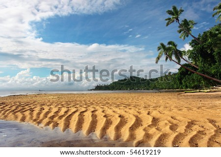 Tropical landscape with sandy dunes and palm trees