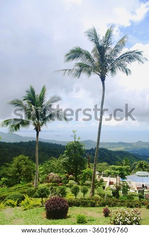 tropical landscape with tall palm trees on foreground, view point of Paradise Park Farm, koh Samui, Thailand - stock photo