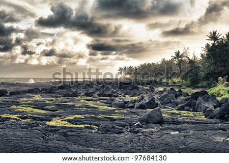 tropical lava beach and palm trees in Hawaii HDR - stock photo