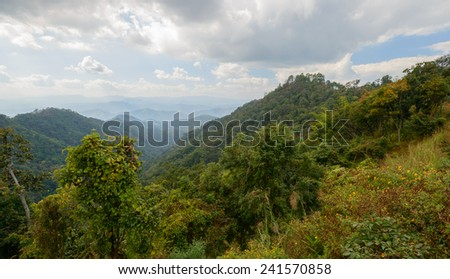 Tropical mountain mist in thailand - stock photo