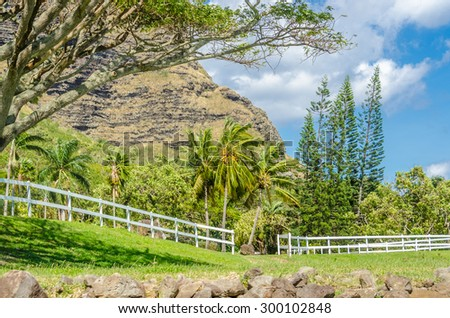 Tropical Mountains in Hawaii, USA. Tropical adventure vacation background.