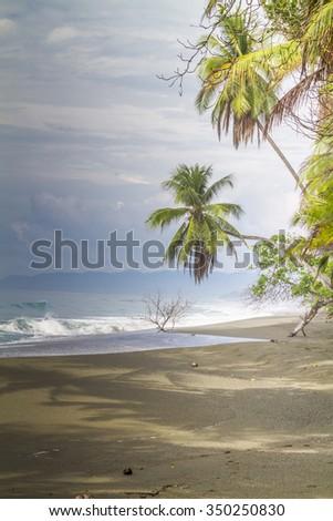 Tropical palm fringed beach Osa Peninsula, Costa Rica - stock photo