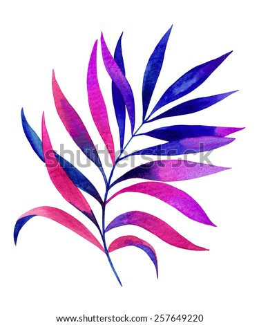 tropical palm leaf. exotic colors. single and isolated on white, watercolor drawing - stock photo