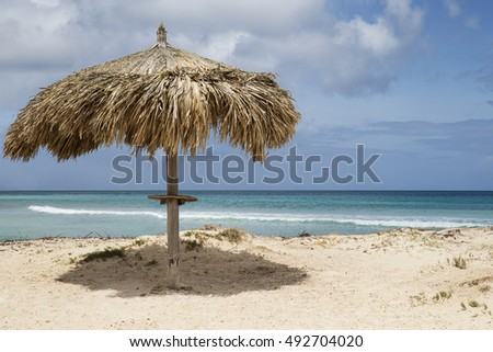 tropical palm thatch cabana on the island of Aruba