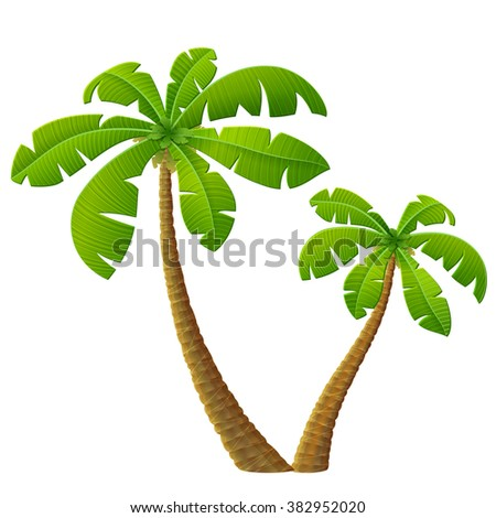 Tropical palm tree with leaves. Group of beach plants. Qualitative illustration for travel concept, southern nature, resort, tropical flora, beach, etc - stock photo