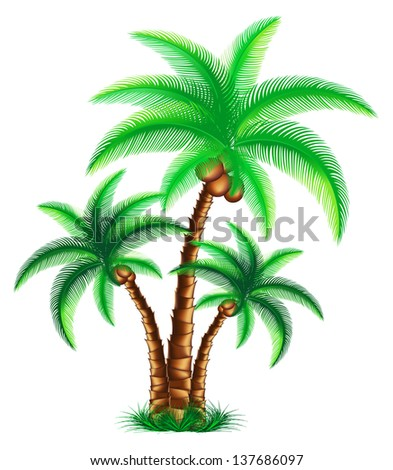 Tropical palm trees are on grass. Rasterized illustration. Vector version in my portfolio
