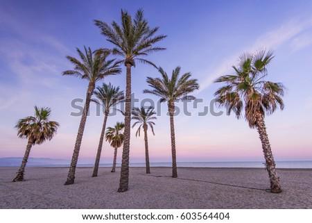 Marcin jucha 39 s portfolio on shutterstock for Tropical smoothie palm beach gardens