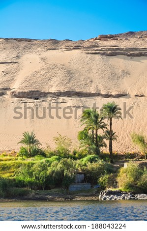 tropical palms and desert on the banks of the nile - stock photo