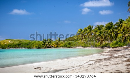 Tropical paradise beach on Contoy Island in Mexico - stock photo