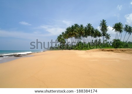 Tropical paradise  beach. Sri Lanka - stock photo