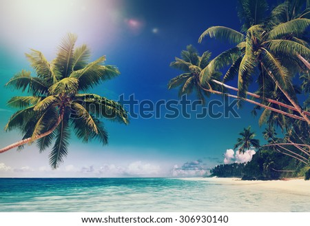 Tropical Paradise Beach Summer Vacation Concept - stock photo