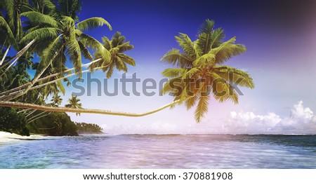 Tropical Paradise Beach Tranquil Scene Concept - stock photo