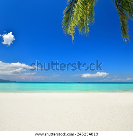 Tropical paradise beach with blue sky background - stock photo