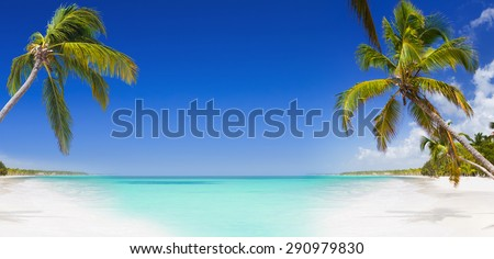 Tropical paradise, clear blue sky, turquoise sea and white sand beach with green palm trees