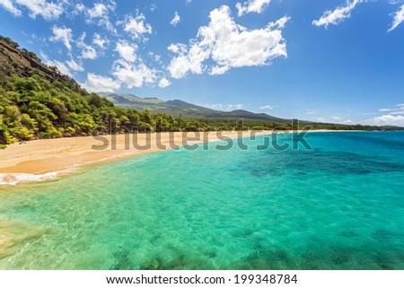 Tropical paradise found - stock photo