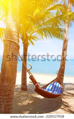 Tropical Paradise - Hammock between palm trees - stock photo