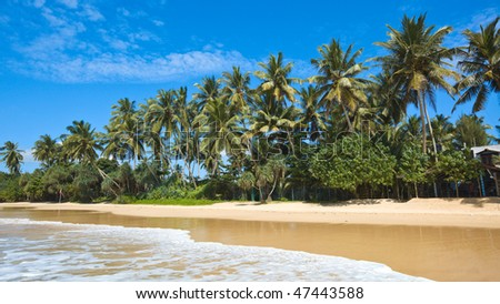 Tropical paradise idyllic beach. Sri Lanka - stock photo