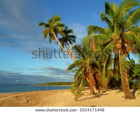 Tropical paradise in Tonga